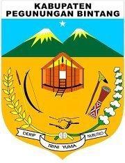 Jasa Website Pegunungan Bintang 082225316999