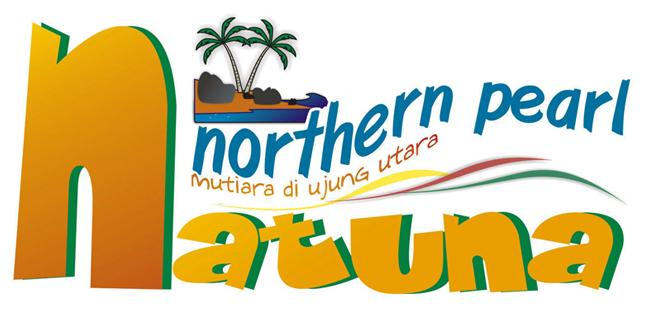 jasa pembuatan website Natuna yoisoweb 1