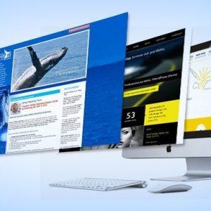 Harga Jasa Pembuatan Website Perusahaan Trenggalek 085695285999
