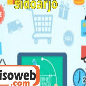 jasa pembuatan website kawasan sidoarjo yoisoweb