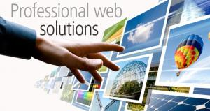 Jasa Pembuatan Web Lampung Barat Yoisoweb